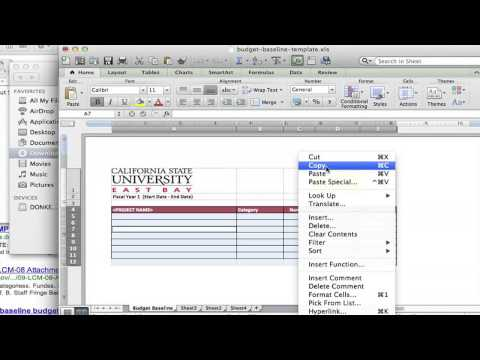 How to Create a Baseline Budget With Microsoft Word : Using MS Word