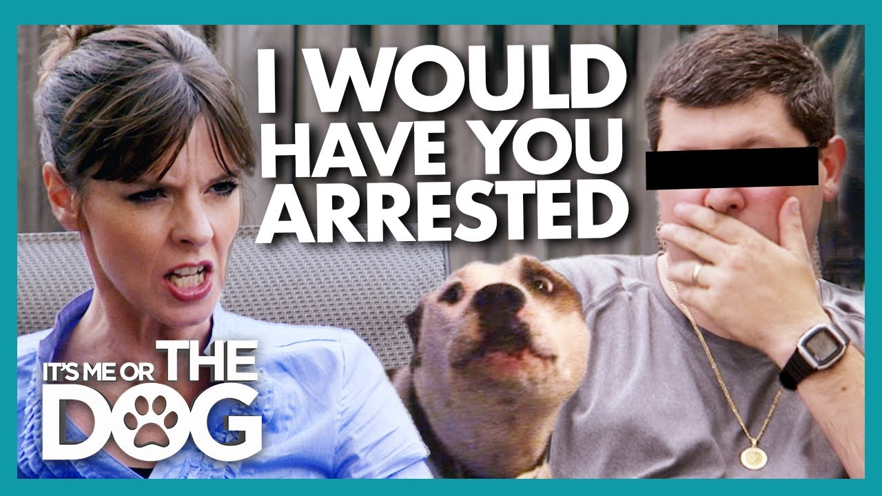 Victoria Threatens Owner Who 'Beat Up' Their Dog with Legal Consequences | It's Me or The Dog