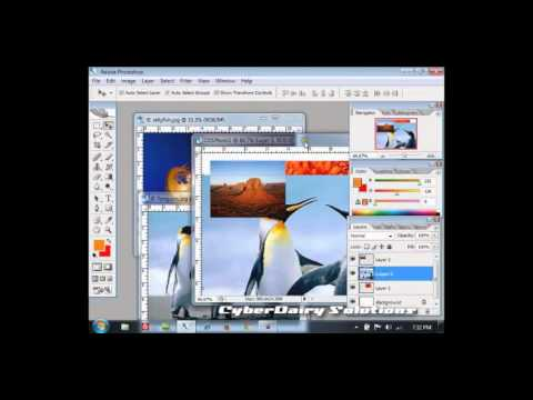Adobe Photoshop CS3 Tutorial  : Using Photoshop Tools Part 1 [Hindi]