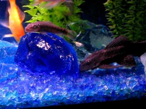Tumbled recycled glass aquarium gravel