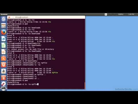 Ubuntu Linux Tutorial | File Management: Copy, Move And Rename