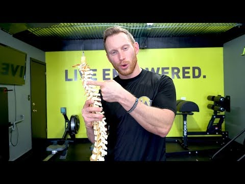 Common Misconceptions of Chiropractic Care - PART 2