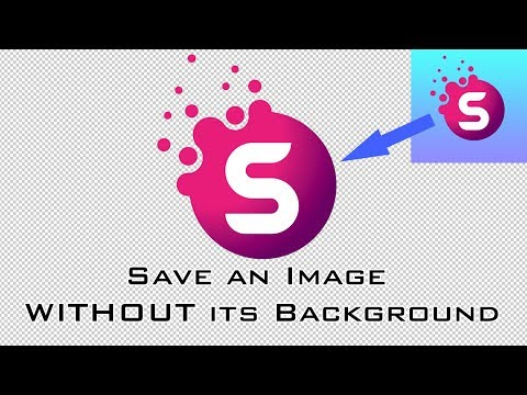 Photoshop Basics Tutorial: How to Save an Image With & Without Its Background