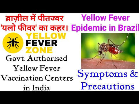Yellow Fever Epidemic in Brazil | Get Vaccinated | Vaccination Centers in India