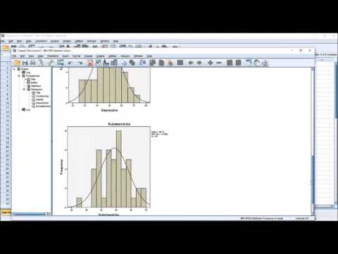 Calculating Descriptive Statistics in SPSS using the