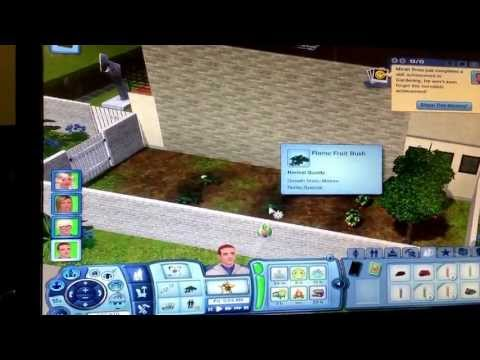 Where to find the Flame fruit bush:The Sims 3