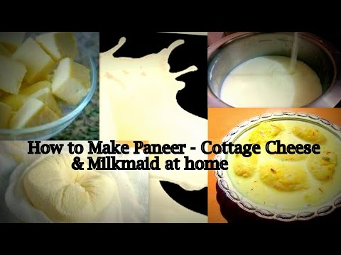 How to make Paneer (Cottage Cheese ) and Condensed Milk at home - Quick