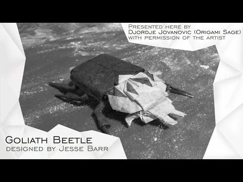 Origami Goliath Beetle by Jesse Barr (TUTORIAL) Precreasing