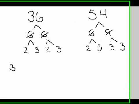 Least Common Multiple - LCM