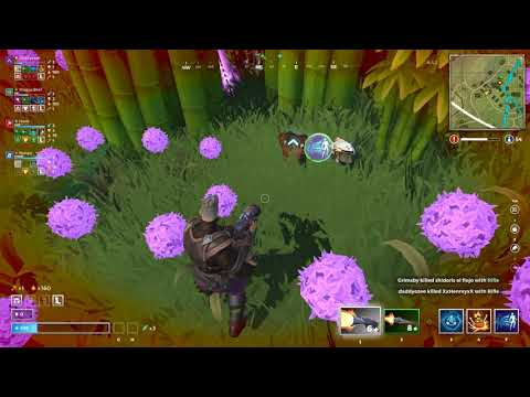 Paladins Realm Royale New Overwatch,Fortnite Battle royale Place 2nd