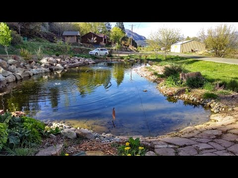 Building Large Pond & Waterfall = Dream Landscaping Durango Colorado & Gardenhart Landscape & Design