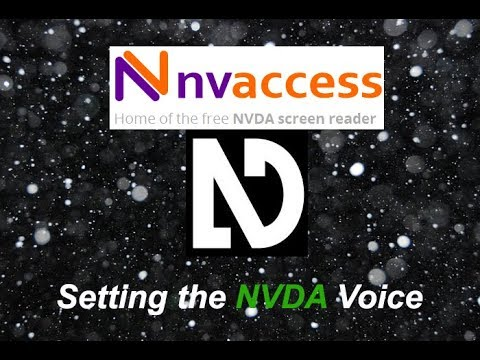 NVDA Basic Lesson: Changing synthesizer voices
