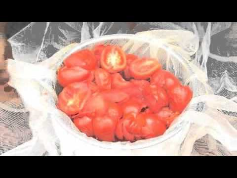 Make tomato passata pasta sauce (taste.com.au)