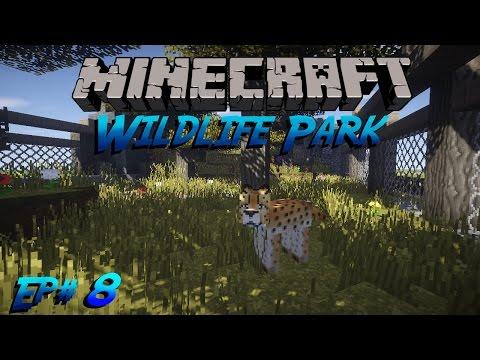 Cheetahs | Wildlife Park Ep# 8