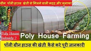 पॉली हाउस  कैसे बनाये | POLY HOUSE AGRICULTURE HINDI | ग्रीन हाउस खेती