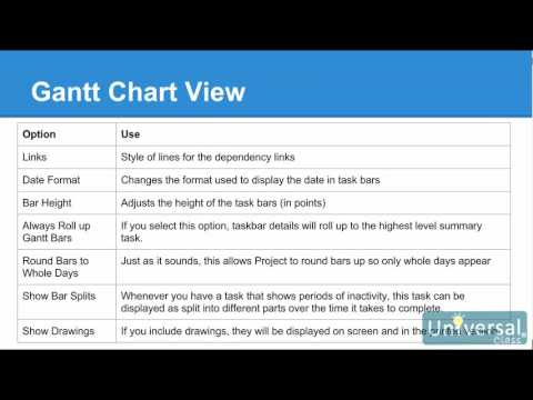 Lesson 15: Customizing and Formatting Your Project - Microsoft Project 2016 Course | Universal Class