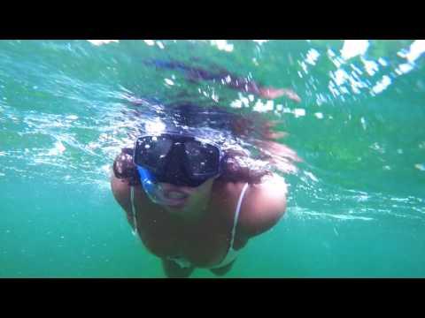 Holbox - Tulum 2017 Whale Shark Adventure