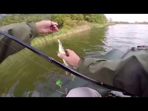 ловля окуня и щуки на пруду видео