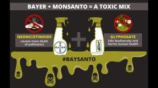Time Out Live!: Glenn Parnham - Monsanto $289 Million Lawsuit