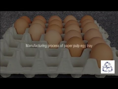 Manufacturing Process of Paper Pulp Egg Tray