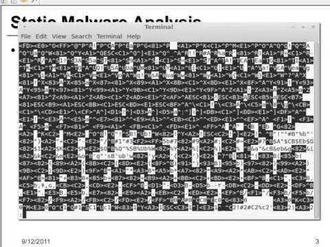 Static Malware Analysis
