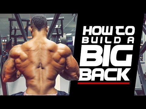 HOW TO BUILD A BIG BACK - Simeon Panda & Andrew Grossett