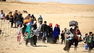 Syrians return home as gov