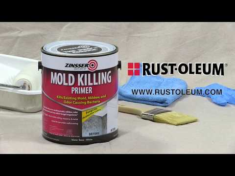 How to Video: How To Apply Zinsser Mold Killing Primer