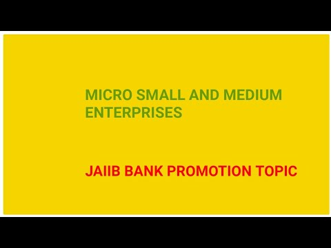 Micro Small and Medium Enterprises in Hindi JAIIB