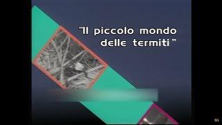 Il Piccolo Mondo delle Termiti - Piccoli Mondi by Film&Clips