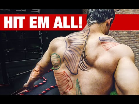 Best Back Workout Video Ever (HIT EVERY MUSCLE!!)