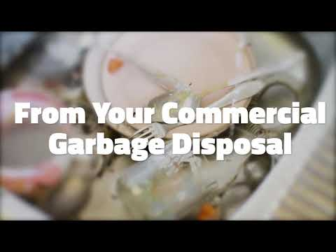 Protect Your Kitchen With Our Safer Commercial Disposal Unit Alternative