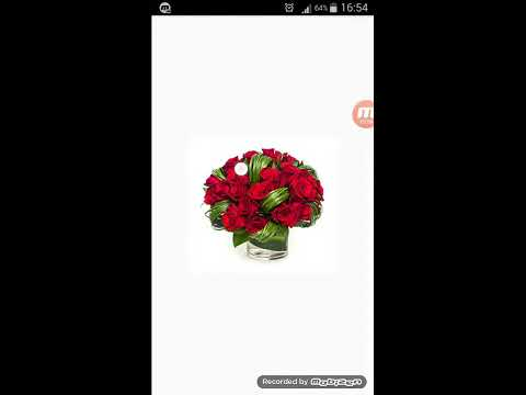 How to animate ImageViews automatically? Android ViewFlipper Demo App