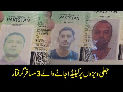 3 passengers traveling to Canada arrested for fake visas