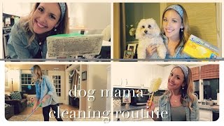 dog mama cleaning routine