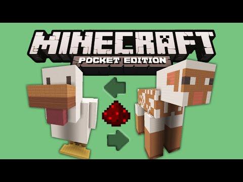 WORKING SHEEP & CHICKEN BUILD - Minecraft PE