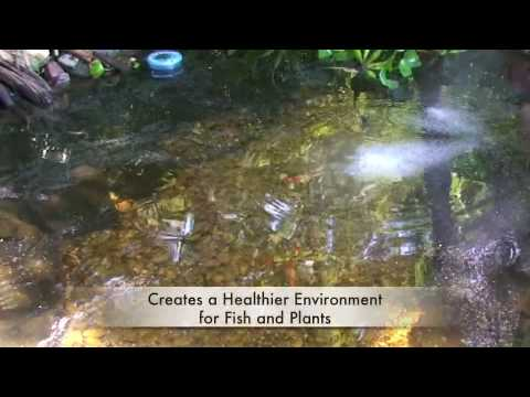 GreenClean Pond Algae Control -- Tips and Applications