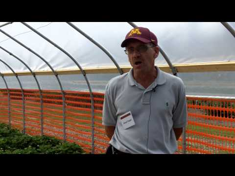 Steven R. Poppe |  Horticulture Scientist