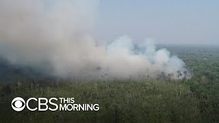 Brazilian forces will deploy to fight Amazon fires