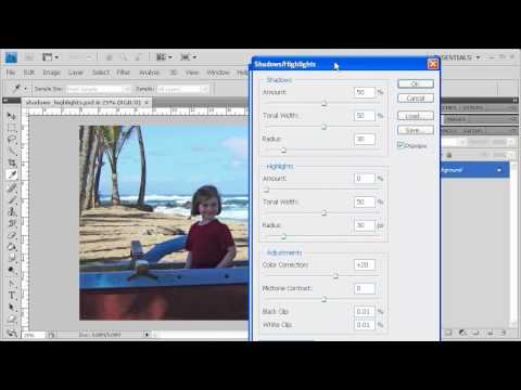 2.3 Bringing the Subject Out of the Shadows: Adobe Photoshop CS4 video