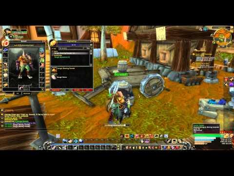 World of Warcraft Hunter Leveling