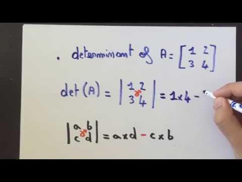 Mathemovie - Hands-on ! - Determinant of a 2x2 matrix