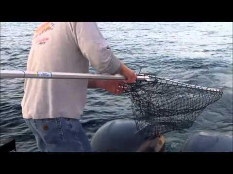 Manistee Fishing Video