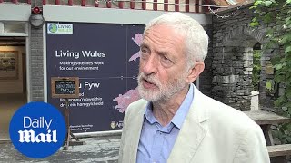 Corbyn: It's not up to Jo Swinson to decide who is PM