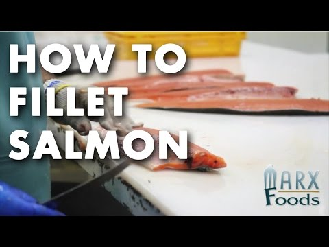 How to Fillet Salmon Video