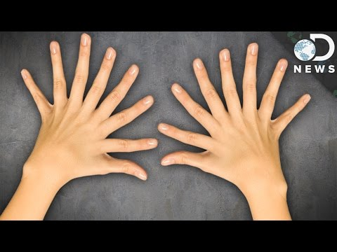 Why Do We Have 10 Fingers and 10 Toes?