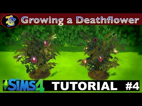 The Sims 4 Tutorial: How to Grow Death Flower