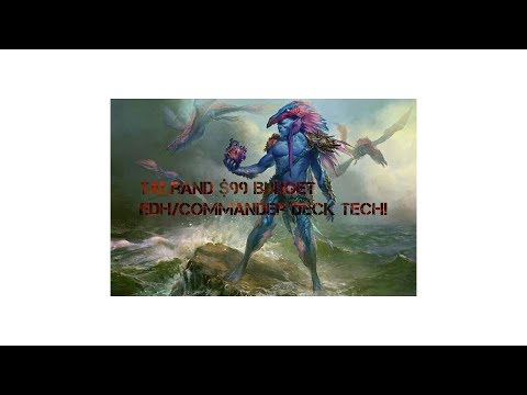 Magic The Gathering: $99 Budget Talrand the Sky Summoner Edh/Commander Deck Tech