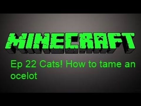 Minecraft 1.7.9 Sam's Survival ep 22 Cats! How to tame an ocelot