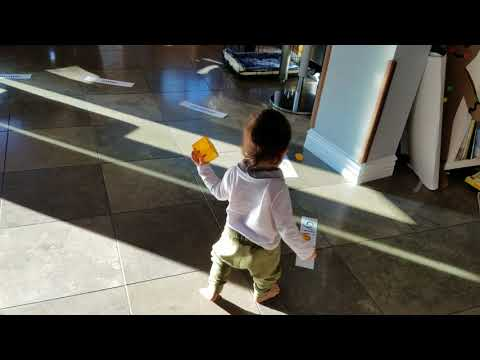 Bodhi at 15 months old. Taught with Glenn Doman reading method